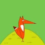 Do Fox da cauda suporte engraçado vermelho grande do estilo dos desenhos animados irritadamente ereto no fundo do verde de grama Foto de Stock