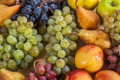 Do fruto vida outonal ainda no fundo de madeira rústico da tabela Imagens de Stock Royalty Free