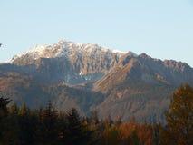 do góry śnieżne Zdjęcie Royalty Free