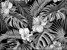 Do hibiscus tropical das folhas do vetor teste padrão sem emenda Foto de Stock Royalty Free
