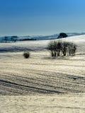 Do inverno vida dinamarquesa ainda Foto de Stock