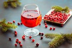 Do Natal vida ainda com perfurador cranberriy Conceito do Natal e do ano novo Foto de Stock Royalty Free