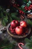 Do Natal vida ainda Vermelho - maçãs deliciosas, arandos, porcas, cones do pinho e ramos de árvore do abeto Imagem de Stock Royalty Free