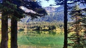 Do norte BC Imagens de Stock Royalty Free