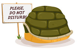Do Not Disturb Turtle Sleeping Royalty Free Stock Photography