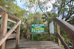Do Not Feed ALLIGATORS Royalty Free Stock Photo