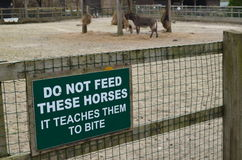 Do not feed these horses sign. Stock Images