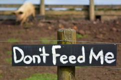 Do not feed me sign on pig pen Stock Images