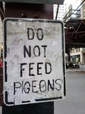 Do not feed pigeons sign. Urban city sign prohibiting feeding birds on the street Stock Images
