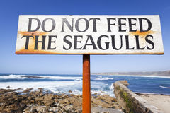 Do Not Feed the Seagulls. Close up of a sign by a harbour requesting that you do not feed the seagulls Stock Image