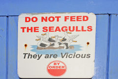 Seagull sign Stock Images