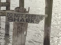 DO NOT FEED THE SHARKS Royalty Free Stock Photo