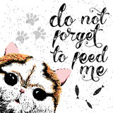 Do not forget to feed me sign with cute smiling cat. Royalty Free Stock Photos