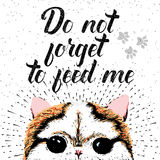 Do not forget to feed me sign with cute smiling cat. Stock Photos
