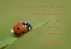 We do not inherit the earth from our ancestors Royalty Free Stock Photo