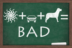 Do not leave your pet in a hot cat. Equation about not to leave your pet in a car on a hot day Stock Images