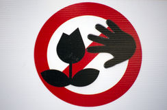 Do not pick the flower Royalty Free Stock Photo