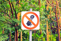 Free Do Not Pick Flowers Sign Royalty Free Stock Photo - 54210475