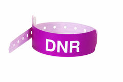 Do Not Resuscitate Patient ID Band. A purple patient ID band with the letters DNR in white. In medicine, a do not resuscitate or DNR, sometimes called a No Code royalty free stock photo