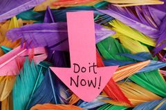Do it now. Beautiful shot of do it now written on paper with background made of feathers stock photos