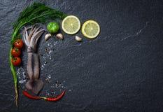 Do oceano cru fresco do calamar do marisco jantar gourmet com ervas e especiarias com tomate do limão foto de stock