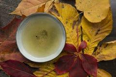 Do outono do chá do tempo closup da opinião superior da vida ainda Imagem de Stock