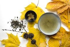 Do outono do chá do tempo closup da vida ainda no fundo branco Fotos de Stock Royalty Free