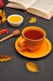 Do outono copo da vida ainda do chá, do mel e do livro na tabela Foto de Stock