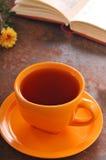 Do outono copo da vida ainda do chá na tabela Imagem de Stock