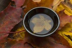 Do outono de chá da cerimônia copo preto da vida ainda do fundo do closup do chá Fotografia de Stock
