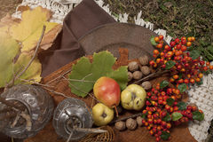 Do outono natureza ainda Fotografia de Stock