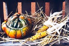Do outono uma vida rústica ainda com abóboras Fotografia de Stock Royalty Free