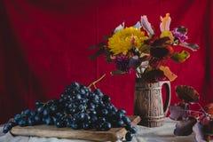 Do outono uvas da vida ainda e flores do outono Imagem de Stock