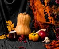 Do outono vida ainda Imagem de Stock