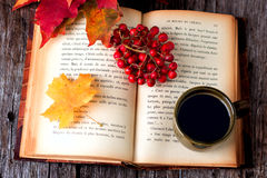 Do outono vida ainda ajustada na tabela de madeira Imagens de Stock