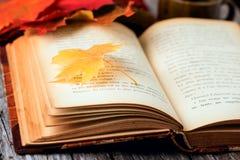 Do outono vida ainda ajustada na tabela de madeira Foto de Stock Royalty Free