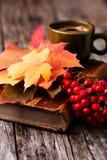 Do outono vida ainda ajustada na tabela de madeira Fotografia de Stock