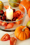 Do outono vida ainda com abóboras Imagem de Stock
