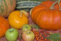 Do outono vida ainda com abóboras e maçãs Foto de Stock