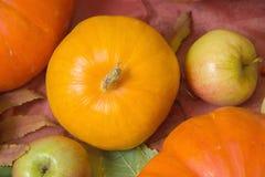 Do outono vida ainda com abóboras e maçãs Imagem de Stock