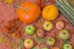 Do outono vida ainda com abóboras e maçãs Fotografia de Stock