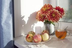 Do outono a vida ainda com as dálias vermelhas em um frasco da lata, na abóbora, em um copo do chá e em maçãs na janela no tempo  Fotografia de Stock