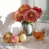 Do outono a vida ainda com as dálias vermelhas em um frasco da lata, na abóbora, em um copo do chá e em maçãs na janela no tempo  Imagens de Stock