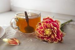 Do outono a vida ainda com as dálias vermelhas em um frasco da lata, na abóbora, em um copo do chá e em maçãs na janela no tempo  Foto de Stock Royalty Free