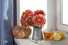 Do outono a vida ainda com as dálias vermelhas em um frasco da lata, na abóbora, em um copo do chá e em maçãs na janela no tempo  Fotos de Stock