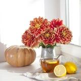 Do outono a vida ainda com as dálias vermelhas em um frasco da lata, na abóbora, em um copo do chá e em maçãs na janela no tempo  Imagem de Stock Royalty Free