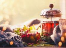 Do outono a vida ainda com copo e potenciômetro do chá com bagas, lenço e queda sae no bokeh ensolarado Imagens de Stock