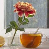 Do outono a vida ainda com dálias do oranger em um frasco da lata, em um copo do chá e na janela no tempo ensolarado Imagem de Stock Royalty Free