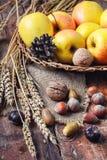 Do outono vida ainda com maçãs e porcas Fotos de Stock Royalty Free