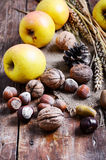 Do outono vida ainda com maçãs e porcas Imagens de Stock Royalty Free